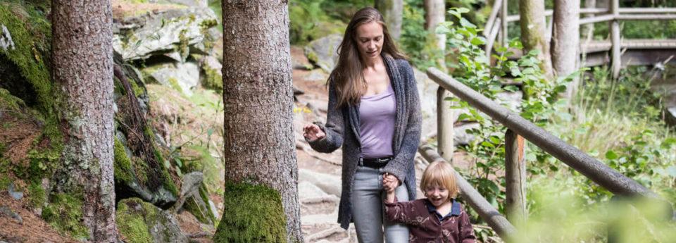 OptimaMed Wildbad Psychreha Wald